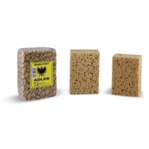 636 Sea type sponge