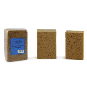 637 Sea type sponge